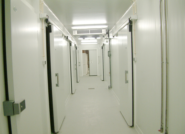 Commercial Sliding Door