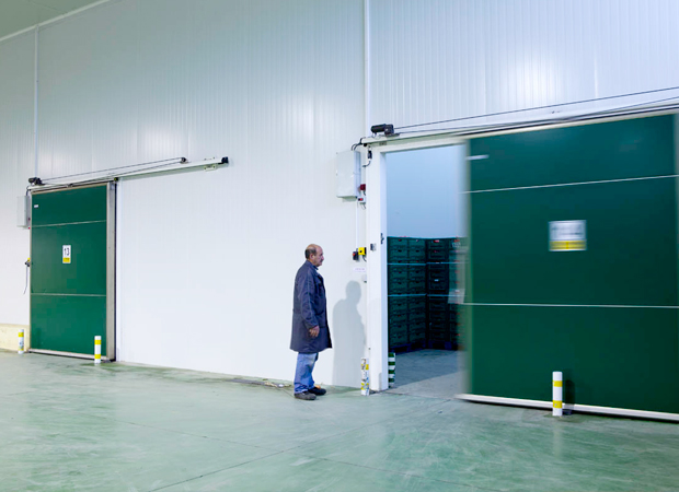 Automatic Industrial Sliding Doors