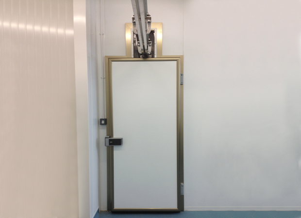 Industrial Pivot Door