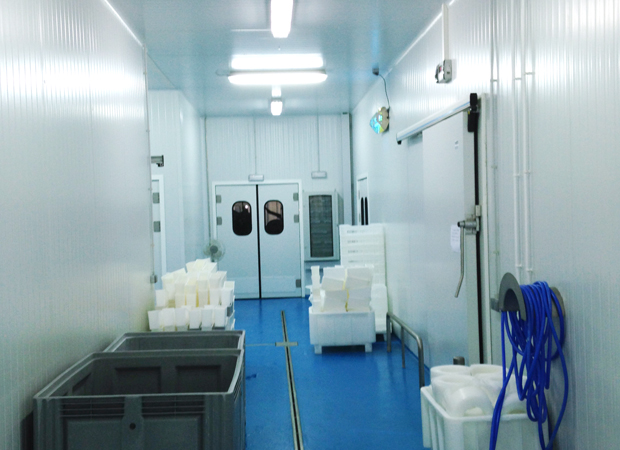 Portes Battantes Injectées de 40 mm