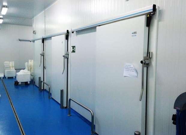 Protections de Portes